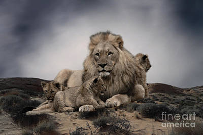 Poster featuring the photograph The Lions by Christine Sponchia