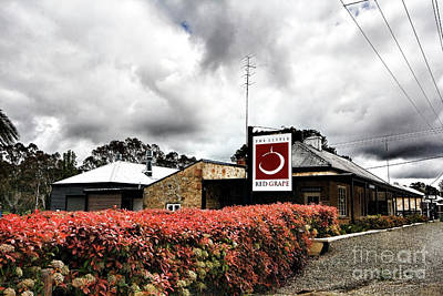 Poster featuring the photograph The Little Red Grape Winery   by Douglas Barnard