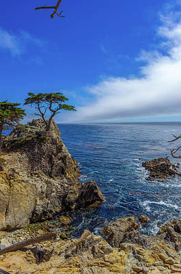 The Lone Cypress 17 Mile Drive Poster by Scott McGuire