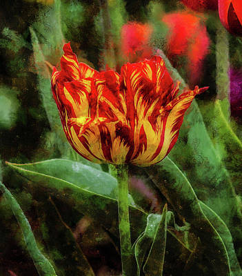 The Lonely Tulip Poster by Thom Zehrfeld