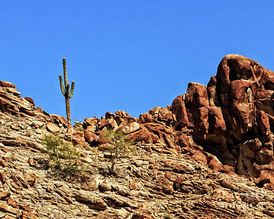 The Lonesome Saguaro Poster by Robert Bales