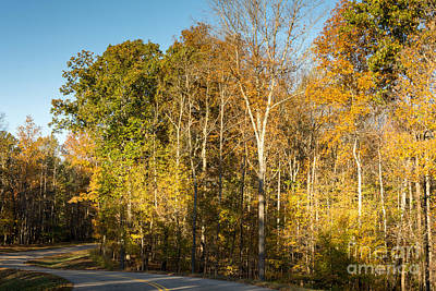 The Long And Winding Road - Natchez Trace Poster by Debra Martz
