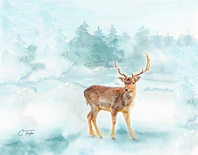 Poster featuring the painting The Magic Of Winter  by Colleen Taylor