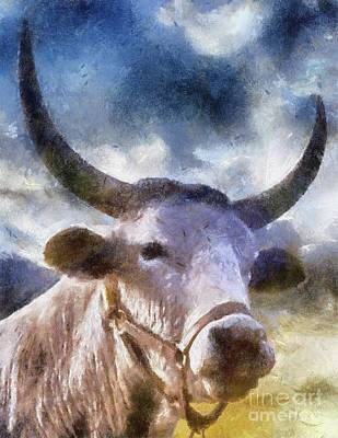 The Majestic Bull By Sarah Kirk Poster