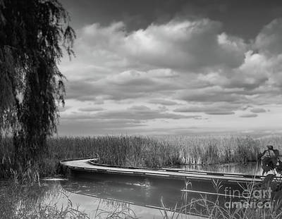 The Marsh-in Black And White Poster by Janal Koenig