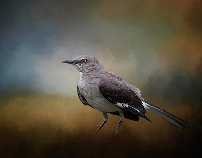 Poster featuring the photograph The Mockingbird A Bird Of Many Songs by David and Carol Kelly
