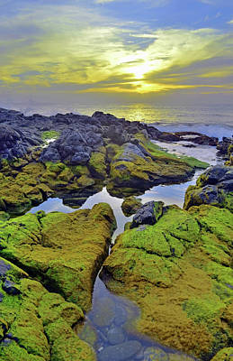Poster featuring the photograph The Mossy Rocks At Sunset by Tara Turner