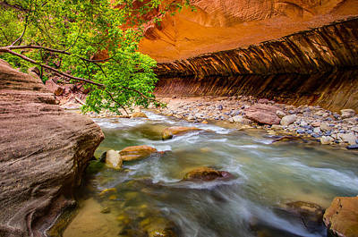 The Narrows Zion National Park Poster by Scott McGuire