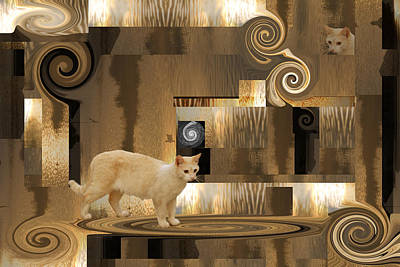 The Next Step - Cat In Abstract Poster