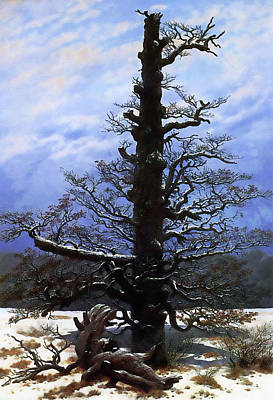 The Oaktree In The Snow Poster by Media Impasto Paper