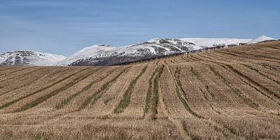 The Ochil Hills In Clackmannanshire Poster
