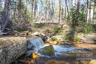 Poster featuring the photograph The Old Creek Falls by Anthony Citro