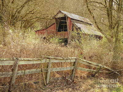 The Old Knob Creek Barn Tennessee Poster by Teresa A and Preston S Cole Photography