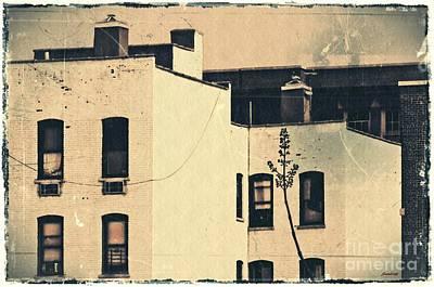 The Old Neighborhood Poster