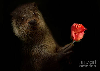 Poster featuring the photograph The Otter by Christine Sponchia