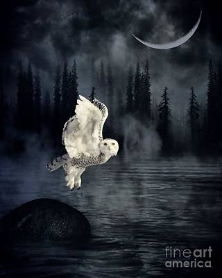 The Owl And Her Mystical Moon Poster by Heather King