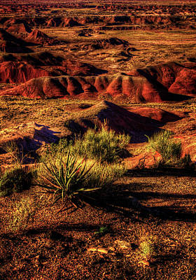 The Painted Desert From Kachina Point Poster