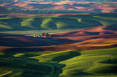 The Palouse Poster by C Steele