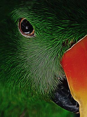 The Parrot Digital Art Poster by Ernie Echols
