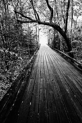 The Path Poster by Scott Pellegrin