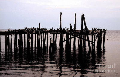 The Pilings Poster by David Lee Thompson