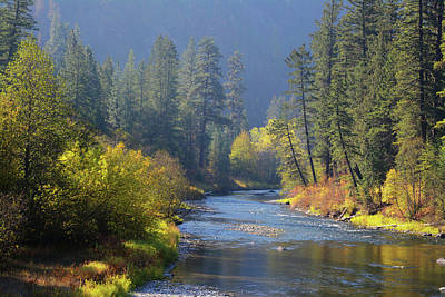 The River Runs Through Autumn Poster