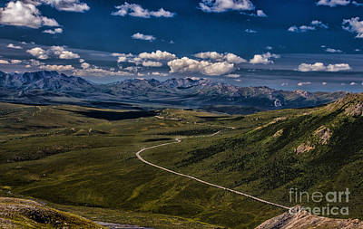 The Road To Denali Poster