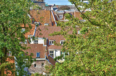 The Rooftops Of Leiden Poster