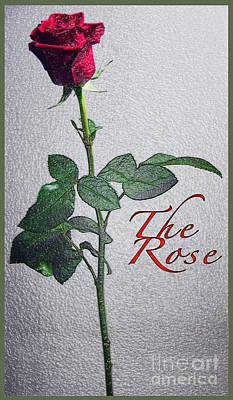 The Rose Poster by Terry Wallace