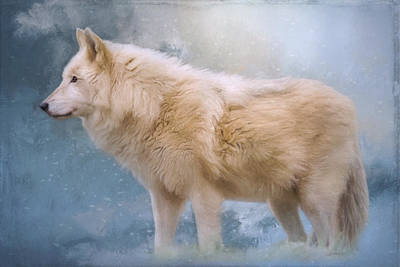 The Spirit Within - Arctic Wolf Art Poster by Jordan Blackstone