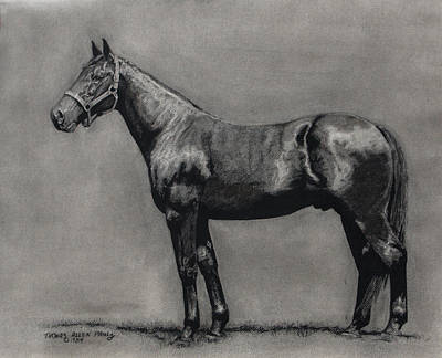 The Standardbred Poster by Thomas Allen Pauly