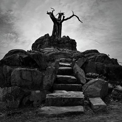 The Stone Steps II Bw Poster by David Gordon