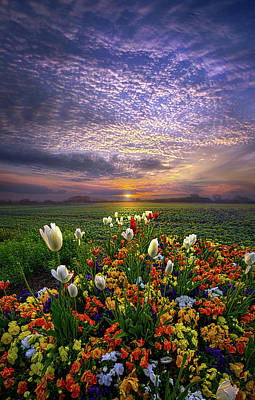 The Sun Just Touched The Morning Poster by Phil Koch