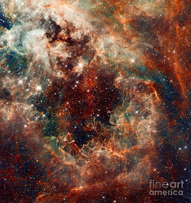 The Tarantula Nebula Poster