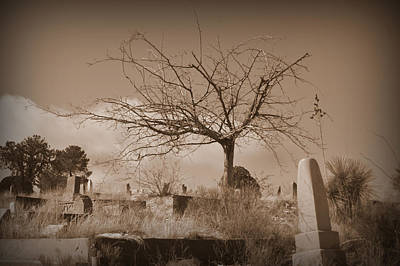 The Tree On Boot Hill  Poster by Nature Macabre Photography