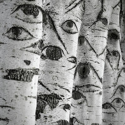 The Trees Have Eyes Poster