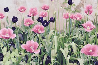 The Tulip Garden Poster