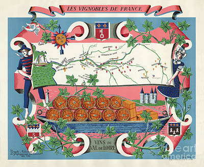 The Vineyards Of France Poster
