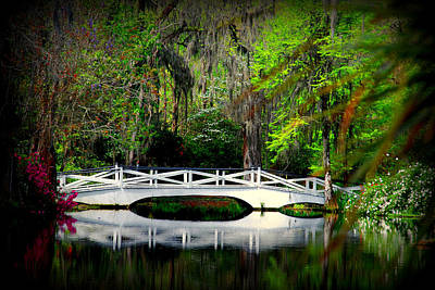 The White Bridge In Magnolia Gardens Sc Poster