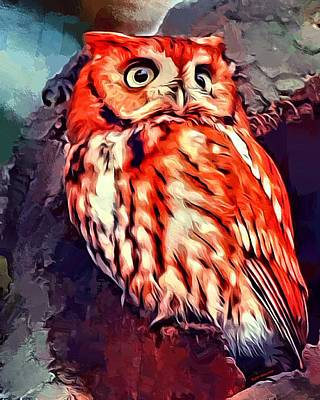 Red Morph Screech Owl Poster by Scott Wallace