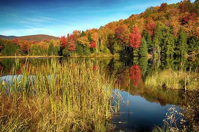 The Wonder Of Autumn Poster by Janet Ballard