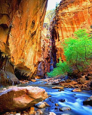 The Zion Narrows Poster