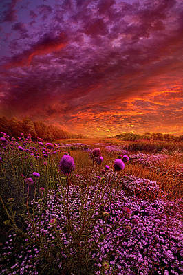 Then Ever Been Lifted Before Poster by Phil Koch