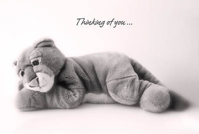 Thinking Of You Poster by Gina Dsgn