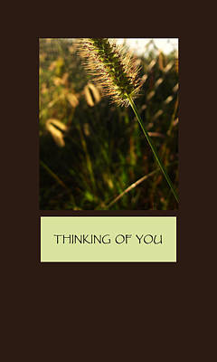 Thinking Of You Poster by Mary Ellen Frazee