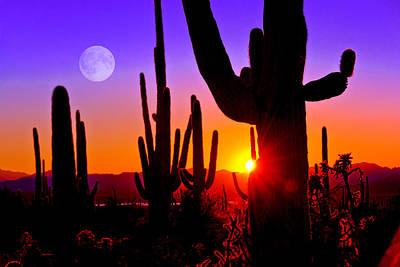 Third Sunset At Saguaro Poster