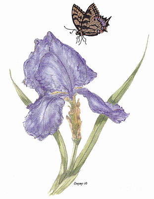 Poster featuring the painting This Great Purple Butterfly by Stanza Widen