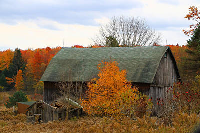 Poster featuring the photograph This Old Barn by Rick Morgan