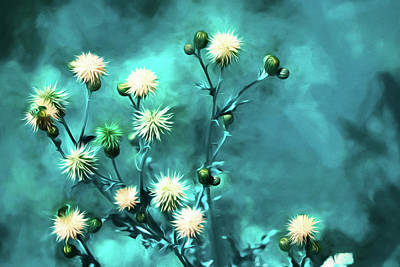 Thistle Art - Large Format Poster by Bonnie Bruno