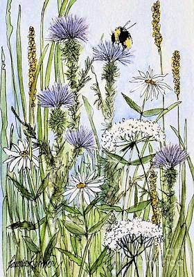Thistles Daisies And Wildflowers Poster by Laurie Rohner